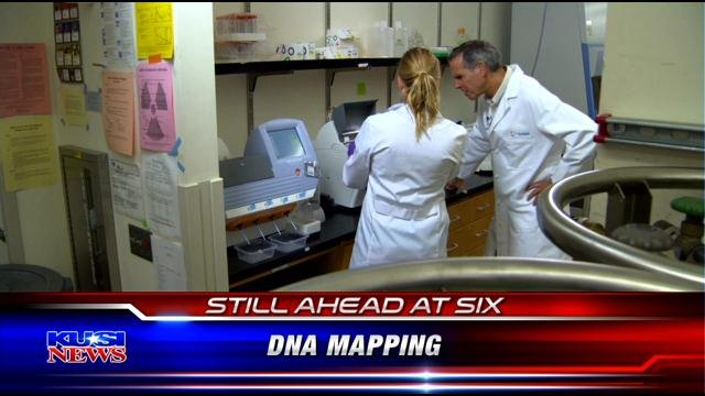 What is DNA mapping?