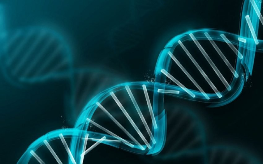 Genomics industry has $5.6B economic impact on San Diego, study finds