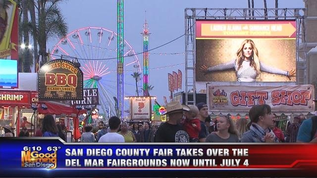 fourth of july weekend is the last weekend to go to the san diego county fair in the fair which opened on june 2 will run through july 4 - San Diego Home Decor 2
